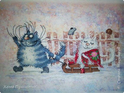 Котики по мотивам рисунков И.Зенюк, вышивка крестиком, МП Студия.  фото 1