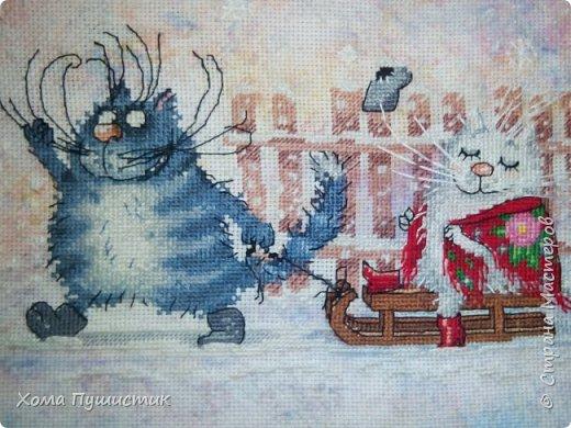 Котики по мотивам рисунков И.Зенюк, вышивка крестиком, МП Студия.  фото 3