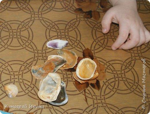 Для поделки мы использовали картонный лоток от яиц, ракушки, немного гальки, мишуру, картон, сеточку от фруктов, ложки одноразовые, гуашь, клей, лак с тонкой кисточкой (для росписи рыбок). фото 6