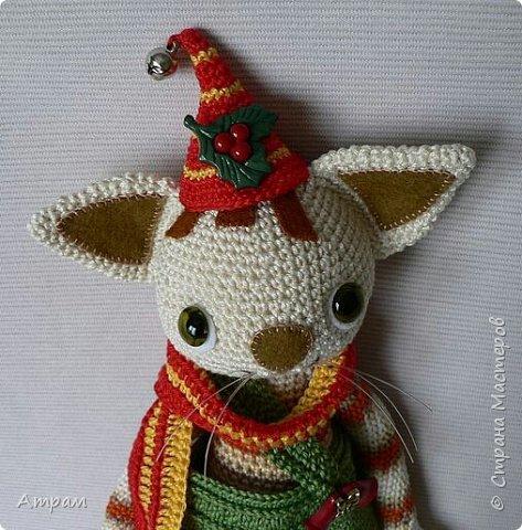 Котенок Финдус (Рождество) фото 3