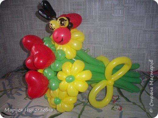 Покажу вам мои шарокрутики - цветочки. Здесь - только букеты из воздушных шаров. Все они сделаны в разное время, в основном на заказ. фото 5
