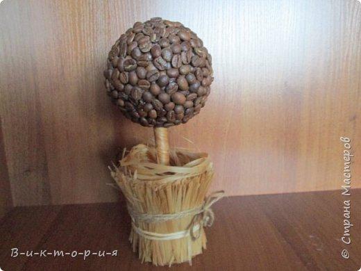 Моё первое деревце. фото 4
