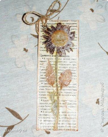 В продолжение гербарной темы http://stranamasterov.ru/node/1082303 фото 3