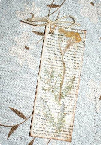 В продолжение гербарной темы http://stranamasterov.ru/node/1082303 фото 12