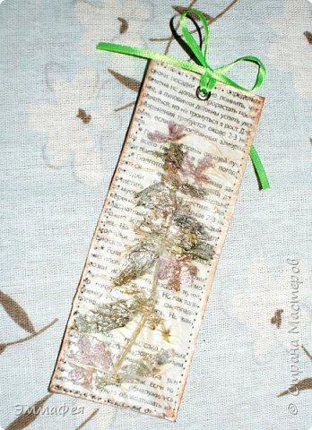 В продолжение гербарной темы http://stranamasterov.ru/node/1082303 фото 13