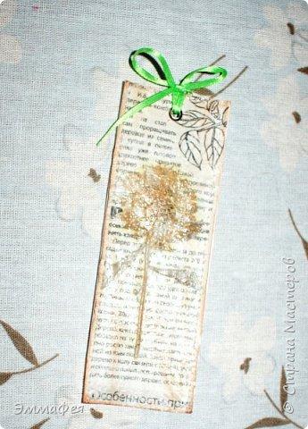 В продолжение гербарной темы http://stranamasterov.ru/node/1082303 фото 16