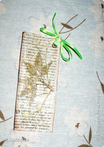 В продолжение гербарной темы http://stranamasterov.ru/node/1082303 фото 18