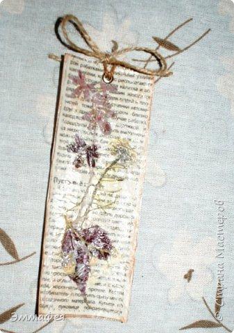 В продолжение гербарной темы http://stranamasterov.ru/node/1082303 фото 19
