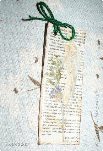 В продолжение гербарной темы http://stranamasterov.ru/node/1082303 фото 20