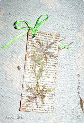 В продолжение гербарной темы http://stranamasterov.ru/node/1082303 фото 21