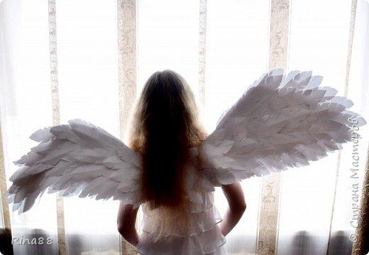 Крылья!  Каждая девушка, наверное, хочет почувствовать себя в роли ангела ) Ну, уж ангела Виктории-сикрет уж точно)  фото 1