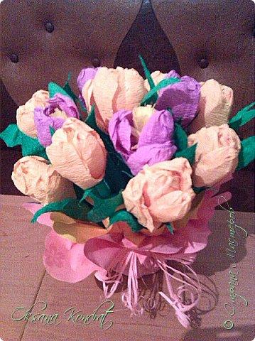 первоцветы фото 1