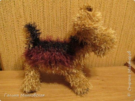 Привет всем!  Учитывая, что за годом Петуха идет год Собаки, и в порядке эксперимента  создалось лохматое  существо . Задумывался эрдельтерьер, а получилась похожая помесь.  Судите сами: фото 3
