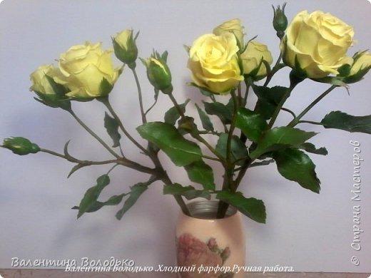 Добрый день мастера и мастерицы!!!!Сегодня у меня расцвели лимонные кустовые розы!!!!! фото 1