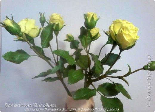 Добрый день мастера и мастерицы!!!!Сегодня у меня расцвели лимонные кустовые розы!!!!! фото 3