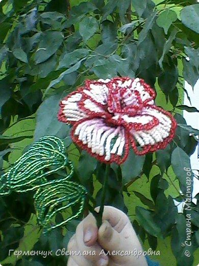 Праздник прошел , но цветы всегда   в тренде  и их всегда приятно получать.Эти розы -  Будько Яны и Жулего Карины .Девочки учатся в 4 классе и  посещают кружок бисероплетения и вот результат их стараний!!! Эти цветы  из бисера , но в руках юных мастериц они ожили  и  засияли красотой !!!Девочки ,  вы  настоящие  рукодельницы !!!  МОЛОДЦЫ!!!  Браво!!! фото 5