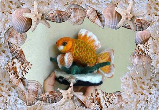 Золотая рыбка фото 3