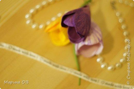 Букет крокусов из фоамирана фото 6