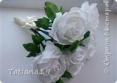 Розы на 8 Марта фото 3