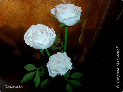 Розы на 8 Марта фото 6