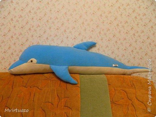 Моя племяшка - пловчиха! Ей скоро 10 лет, а она уже выступает на соревнованиях и выигрывает!! ...и очень любит дельфинов! Подготовила ей подборочку.. Футболка.. фото 3