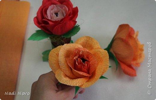 В этом уроке я покажу как сделать цветок из гофрированной бумаги с переходом цвета. фото 1
