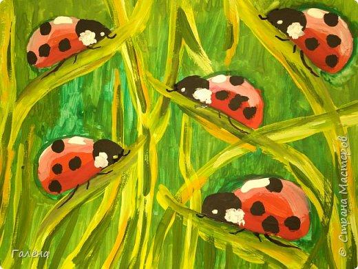 Как,иногда, приятно зимой,ранней весной вспомнить о теплом лете.Божьи коровки,наверное,самые яркие представители этого времени года.И их так легко и интересно рисовать деткам.А всего то надо,найти лист бумаги и гуашевые краски.И так,приступим! фото 14