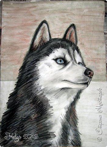 Накопилось много детских работ за разные месяцы, вот часть из них решила показать вам. Творили дети  5,5-7 лет. Первая работа собака породы хаска, рисовали соусом, сангиной, углем, мелом и белой гуашью на листе А3. фото 5