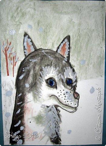Накопилось много детских работ за разные месяцы, вот часть из них решила показать вам. Творили дети  5,5-7 лет. Первая работа собака породы хаска, рисовали соусом, сангиной, углем, мелом и белой гуашью на листе А3. фото 17