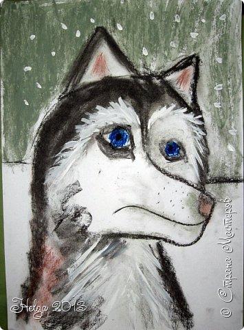 Накопилось много детских работ за разные месяцы, вот часть из них решила показать вам. Творили дети  5,5-7 лет. Первая работа собака породы хаска, рисовали соусом, сангиной, углем, мелом и белой гуашью на листе А3. фото 9