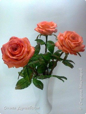 Здравствуйте жители страны мастеров.Полноразмерные розы в подарок.Очень старалась. фото 1