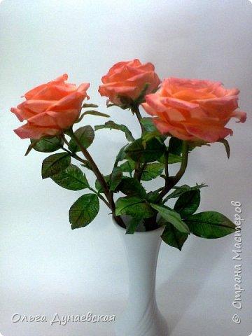 Здравствуйте жители страны мастеров.Полноразмерные розы в подарок.Очень старалась. фото 3
