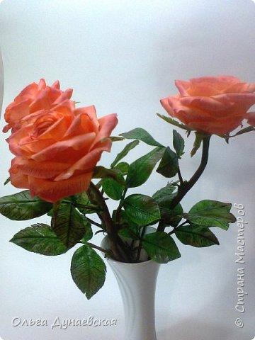 Здравствуйте жители страны мастеров.Полноразмерные розы в подарок.Очень старалась. фото 4