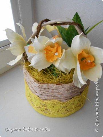 Все мои лукошки полные цветов))))) фото 10