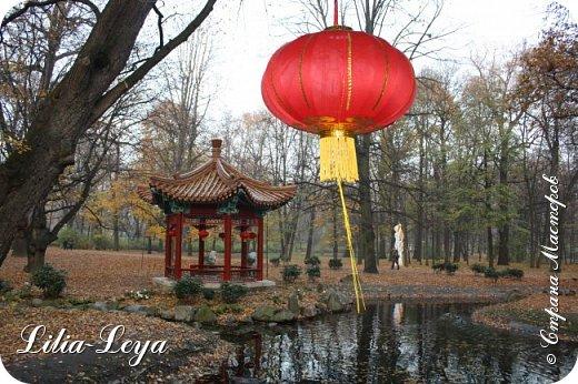 Совсем недавно я приглашала вас на прогулку в Тридевятое царство к Их Величествам павлинам   https://stranamasterov.ru/node/1085754 А сейчас предлагаю заглянуть в Китайский уголок и полюбоваться редкой птичкой с красивым названием мандаринка. фото 1