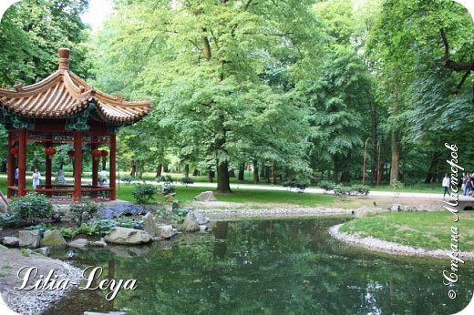 Совсем недавно я приглашала вас на прогулку в Тридевятое царство к Их Величествам павлинам   https://stranamasterov.ru/node/1085754 А сейчас предлагаю заглянуть в Китайский уголок и полюбоваться редкой птичкой с красивым названием мандаринка. фото 24