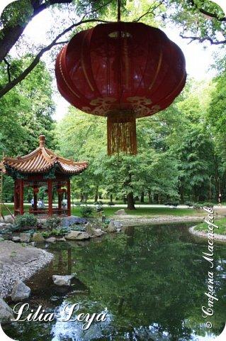 Совсем недавно я приглашала вас на прогулку в Тридевятое царство к Их Величествам павлинам   https://stranamasterov.ru/node/1085754 А сейчас предлагаю заглянуть в Китайский уголок и полюбоваться редкой птичкой с красивым названием мандаринка. фото 25
