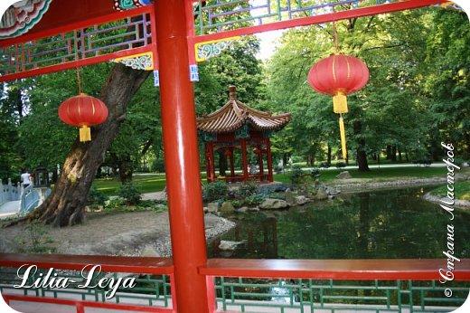Совсем недавно я приглашала вас на прогулку в Тридевятое царство к Их Величествам павлинам   http://stranamasterov.ru/node/1085754 А сейчас предлагаю заглянуть в Китайский уголок и полюбоваться редкой птичкой с красивым названием мандаринка. фото 26