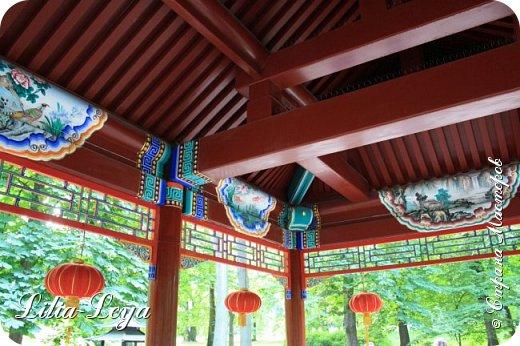 Совсем недавно я приглашала вас на прогулку в Тридевятое царство к Их Величествам павлинам   http://stranamasterov.ru/node/1085754 А сейчас предлагаю заглянуть в Китайский уголок и полюбоваться редкой птичкой с красивым названием мандаринка. фото 27