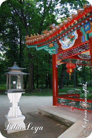 Совсем недавно я приглашала вас на прогулку в Тридевятое царство к Их Величествам павлинам   https://stranamasterov.ru/node/1085754 А сейчас предлагаю заглянуть в Китайский уголок и полюбоваться редкой птичкой с красивым названием мандаринка. фото 28