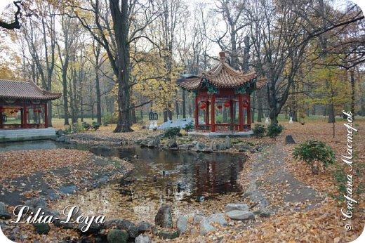 Совсем недавно я приглашала вас на прогулку в Тридевятое царство к Их Величествам павлинам   https://stranamasterov.ru/node/1085754 А сейчас предлагаю заглянуть в Китайский уголок и полюбоваться редкой птичкой с красивым названием мандаринка. фото 3