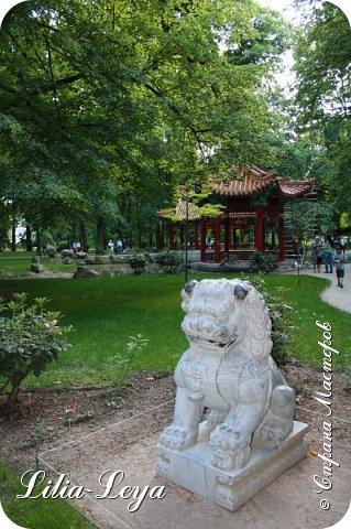 Совсем недавно я приглашала вас на прогулку в Тридевятое царство к Их Величествам павлинам   http://stranamasterov.ru/node/1085754 А сейчас предлагаю заглянуть в Китайский уголок и полюбоваться редкой птичкой с красивым названием мандаринка. фото 31