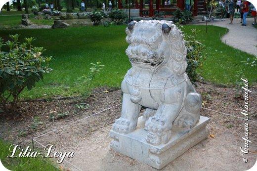 Совсем недавно я приглашала вас на прогулку в Тридевятое царство к Их Величествам павлинам   http://stranamasterov.ru/node/1085754 А сейчас предлагаю заглянуть в Китайский уголок и полюбоваться редкой птичкой с красивым названием мандаринка. фото 32