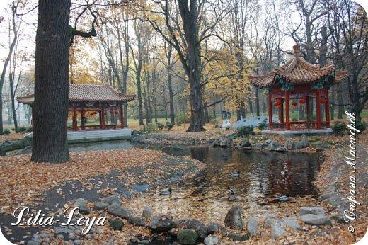 Совсем недавно я приглашала вас на прогулку в Тридевятое царство к Их Величествам павлинам   http://stranamasterov.ru/node/1085754 А сейчас предлагаю заглянуть в Китайский уголок и полюбоваться редкой птичкой с красивым названием мандаринка. фото 4
