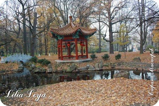 Совсем недавно я приглашала вас на прогулку в Тридевятое царство к Их Величествам павлинам   http://stranamasterov.ru/node/1085754 А сейчас предлагаю заглянуть в Китайский уголок и полюбоваться редкой птичкой с красивым названием мандаринка. фото 5