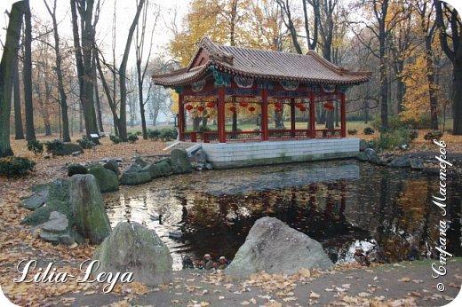 Совсем недавно я приглашала вас на прогулку в Тридевятое царство к Их Величествам павлинам   http://stranamasterov.ru/node/1085754 А сейчас предлагаю заглянуть в Китайский уголок и полюбоваться редкой птичкой с красивым названием мандаринка. фото 6