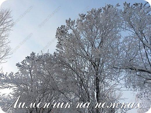Давненько я не появлялась в Стране мастеров ))) Придется в разгар весны немножко вспомнить зиму ))))  Одна из новогодних ёлок в центре Калуги. Спонсоры спецэффектов - снег, ветер и вспышка на телефоне )))) фото 4