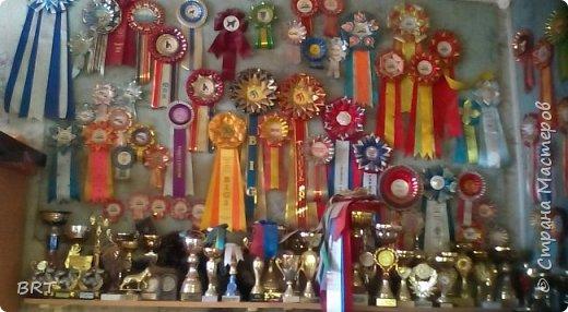 Наша самая младшенькая. Сентябрь 2013 года, Симферополь (Украина), двойная международная выставка. Дебют трехмесячной ляльки, приехавшей из столицы Урала в Крым. фото 6