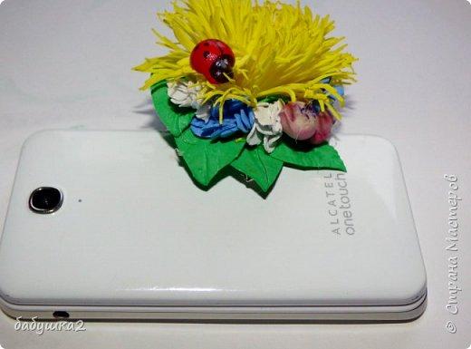 Привет, жители СМ. Вот хочу поделиться своими цветочками с вами. фото 3