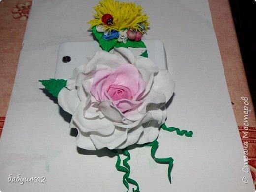 Привет, жители СМ. Вот хочу поделиться своими цветочками с вами. фото 4